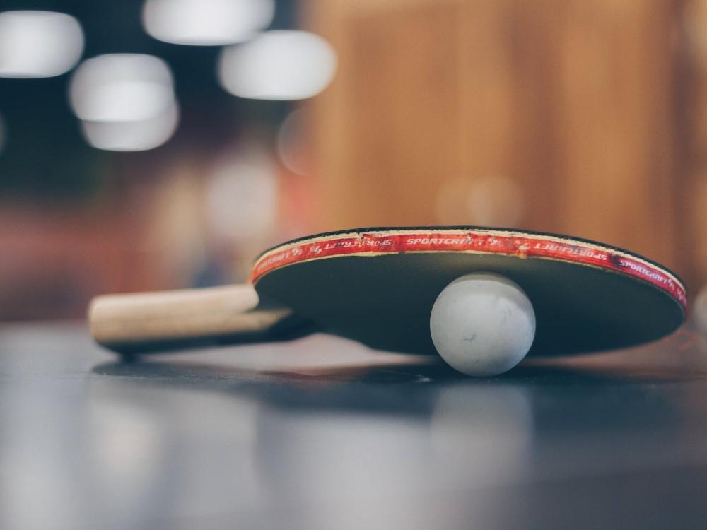 IPalangoje – profesionalų stalo teniso kovos
